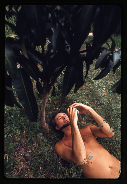 James Leo Herlihy beneath a mango tree.