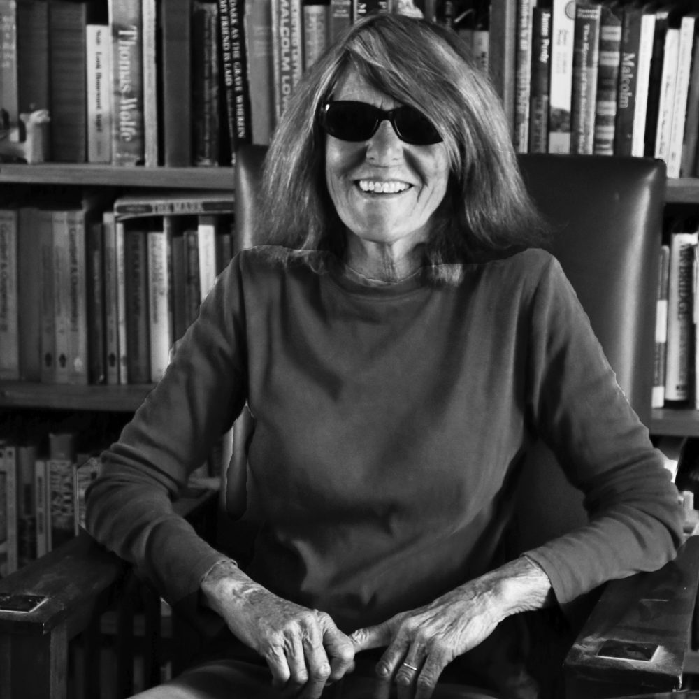 Joy Williams, photo by Anne Dalton